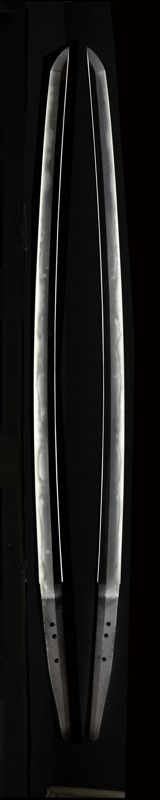 千子村正の特徴である表と裏の刃文が揃い茎がタナゴ腹茎である。 This is the characteristic of Muramasa. The front and back swords are the same. The stem is a unique tanago abdominal stem.