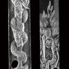 本作彫刻(表) 倶利迦羅は・・・・ 不動明王の形を変えたものであり、 大日如来が悪魔を降伏するために忿怒の相を表し、 剣と龍を仏法と外道(悪魔)に擬して、 両者争いついに仏法の勝利に帰する様を表したもの。 密教の世界では宗教具としても姿を変えて表わされている。 剣に絡みついた龍は邪悪な心を、剣は不動明王を擬したもので、 両者の戦いを描いたものが倶利迦羅である。 本作彫刻(裏) 不動明王は・・・・ 梵字からきており「動かないもの」「守護者」アチャラ・ナータが 直訳で不動明王とされる。密教の中で悪魔を打ち払う役目と共に、 悪人でも仏道(良い心)に導く決意のあらわしの姿とも。 「心・姿も鬼にして」働きかけている明王界の中心で大日如来の化身。 また五大明王(三世明王・軍荼利明王・大威徳明王・金剛夜叉明王の5体)の の中心的役割であるのが不動明王 刀身の彫刻に不動明王を彫ったものとして 古くは「骨喰藤代四郎」「不動国行」「不動行光」が名高く 新刀期では埋忠明寿や虎徹、 刀の彫刻名手としては堀川国広、一竿子忠綱(二代近江守忠綱)などに 有名なものがある。